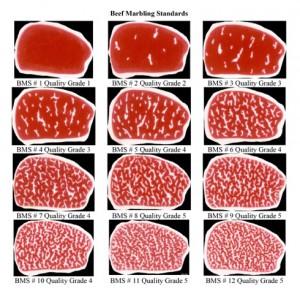 01-japanese-meat-grading-BMS
